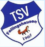 Dieses Bild hat ein leeres Alt-Attribut. Der Dateiname ist TSV-Fellingshaussen.png